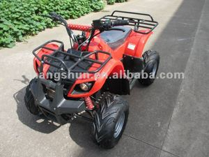 800W electrical ATV with differential mechanism