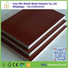 Factory cheap price 19mm thick plywood red marine plywood for sale