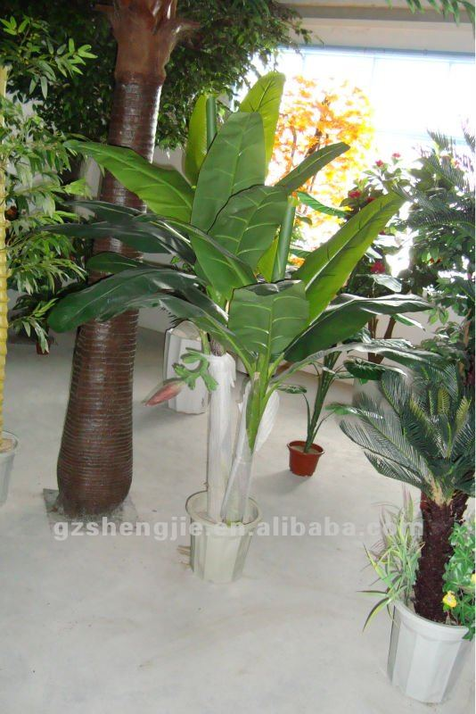 Sj jard n uso artificial plataneros musa paradisiaca rbol for Jardin artificial interior