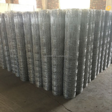 wholesale hot dipped galvanized welded wire mesh roll for cattle fence