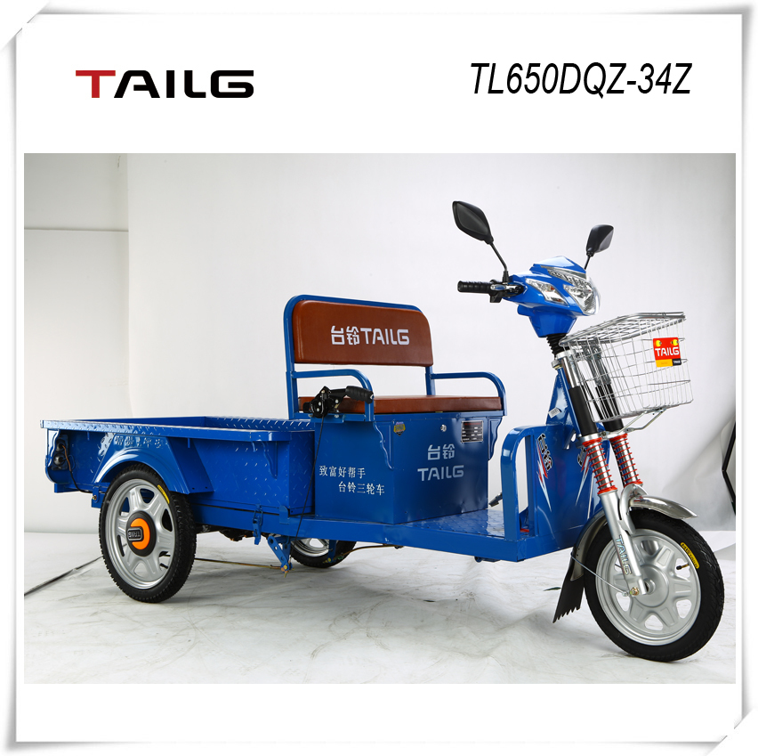 China's strong overweight steel frame 650W 48V electric tricycle TL650DQZ-34Z for sale
