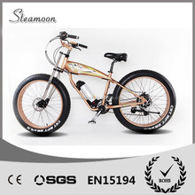 new style fat tire electric bike/bicycle, beach sport ebike with lithium battery