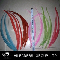 Long Dyed Rooster Feathers