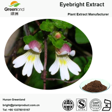 Herbal Eyebright Extract Powder With Our Own Factory