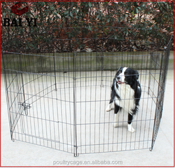 Powder Coated Cheap Dog Kennel Run (Strong & Durable, Professional Design)