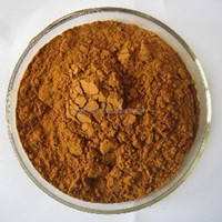 Pharmaceutical Grade 5:1 Brown Powder Form terminalia belerica extract