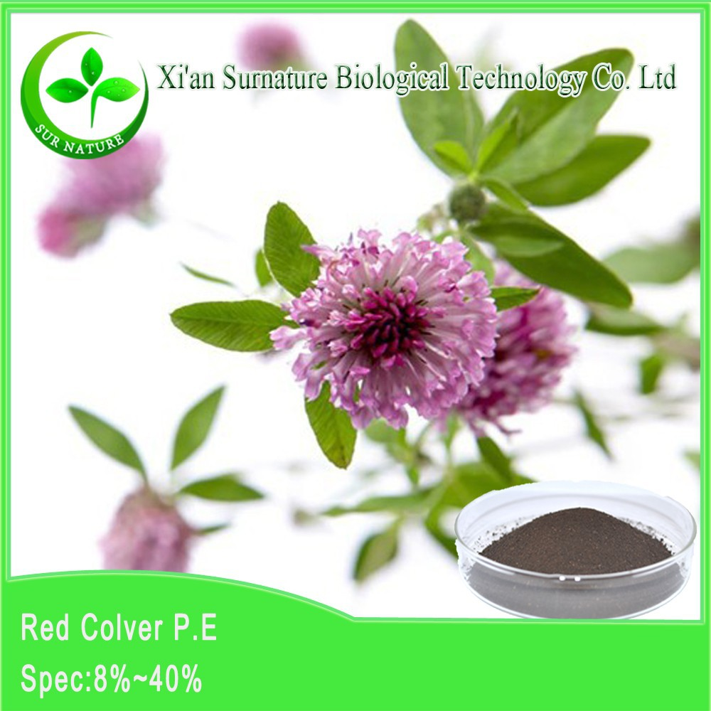 supplying red clover seed extract of factory price