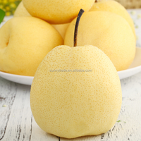 Chinese fresh pear with top quality