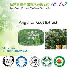 Best quality & best price Angelica herbal Extract, Angelica root extract powder, Radix Angelicae Dahuricae P.E. 4:1 10:1 20:1
