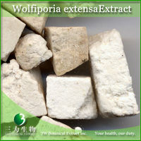 Wolfiporia extensa Extract - Food Grade Extract