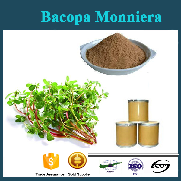 High quality Brahmi herbs extract/ Bacopa Monniera extract /Bacopaside