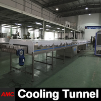 Mini Customize Small Scale Production walnut crack machine Cooling Tunnel Machine