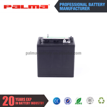 Customized small rechargeable 12v battery