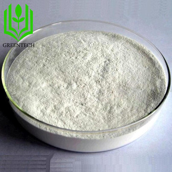 Perfect Quality GMP factory Chondroitin Sulfate Fish 90% USP grade