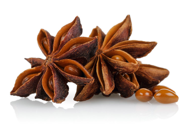 Specializing in the production of purity natural star anise fennel seeds