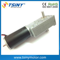 12v dc high torque electric worm motor with double shaft reduction gear