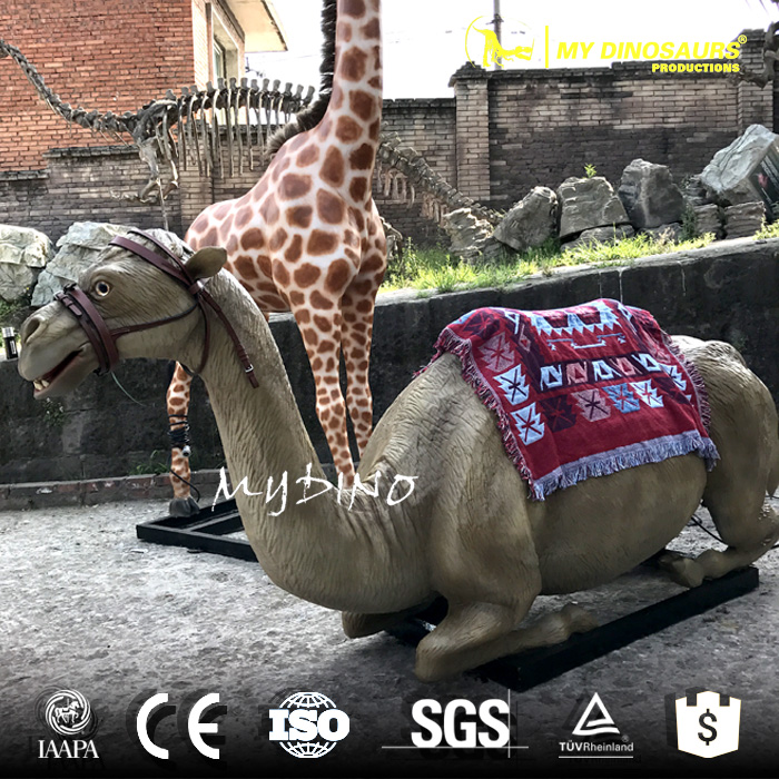 Animal Ride Camel.jpg
