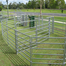 China supplier galvanized used round pipe cattle yard fence panel / cheap cattle panels ( 1.8 m x 2.1 m )