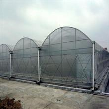 Large 10 meters Multi-Span Plastic Film Greenhouse, Vegetables Greenhouse
