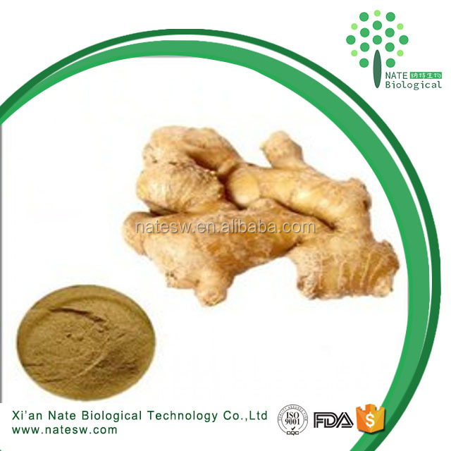 high purity 1%~5% gingerol pure ginger extract black ginger extract