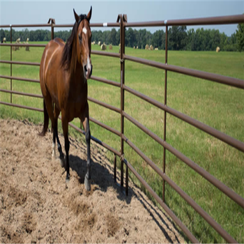 ce hot dipped galvanized ca market livestock fence,galvanized rural breeding livestock fence,livestock fence panels for horse