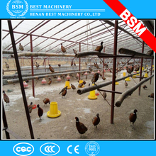 Floor-rearing chicken house / customized poultry farm equipments for chicken broilers