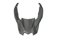 Carbon Front Fairing for BMW R1200GS 2013