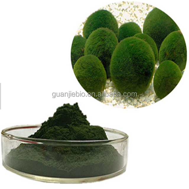 Wholesale organic certificated chlorella vulgaris powder