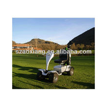 24volt curtis control ce approved mini electric vintage golf carts electric golf cart 1 person sale