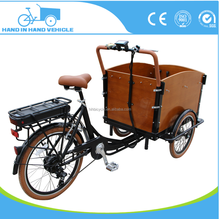 Wooden Box Ce Approved Family Electric Cargo Tricycle Tuk Tuk for Sale
