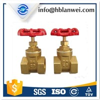 Hot sale Brass rising stem gate valve