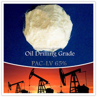 PAC-LV Polyanionic Cellulose Drilling Fluid Mud