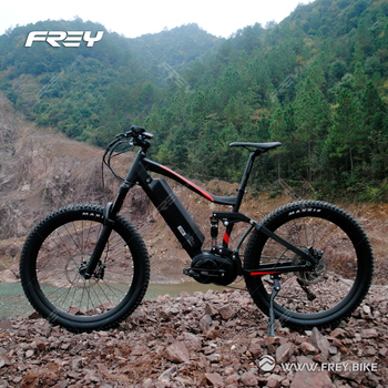 Super performance Climbing and downhill 1000W Bafang mid drive electric mountain bike