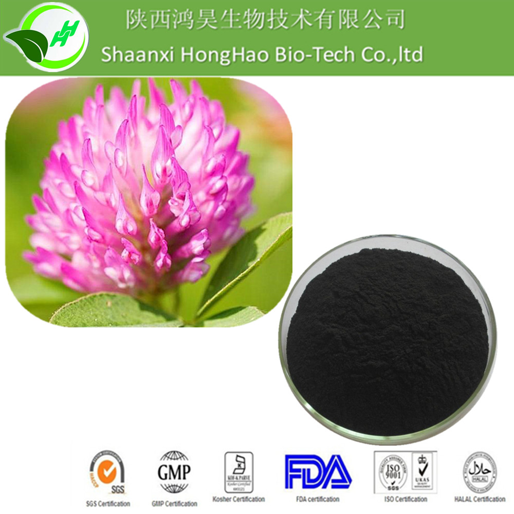Hot Sale Herb extract powder Isoflavones Red Clover P.E.