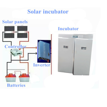 6336pcs full automatic solar energy poultry egg incubator made in china