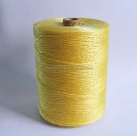 Yellow Submarine Cable Winding Twisted PP Yarn