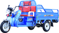 Strong Power Electric Cargo Tricycle Manufacturer in China