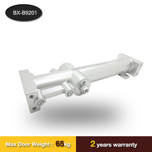Guangdong remote control door closer