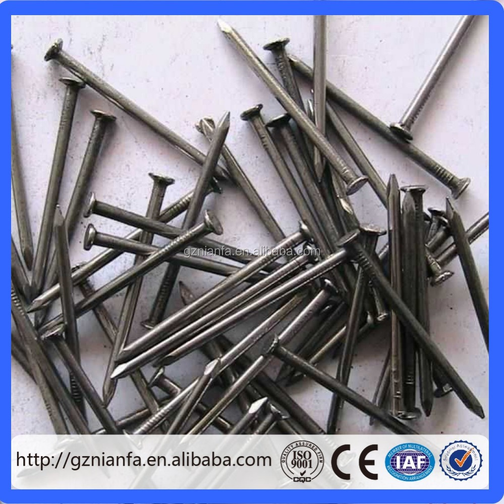 High quality common wire nail/Black Iron common nail(Guangzhou Factory)
