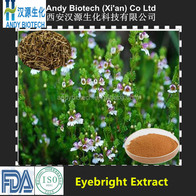 Best Selling Eyebright Herbal Extract