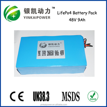 Deep cycle lifepo4 48v 20aH Rechargeable battery pack for golfcar and forklift