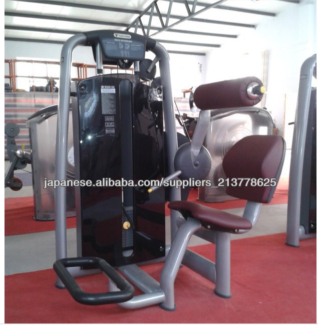Back extension tz-6006/Commercial gym equipment /CE Approved Commercial Fitness Equipment