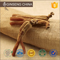 2016 Orean Ginseng Red Korea Ginseng For 8 Years Old extract of sugar ginseng