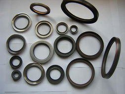 lips stainless steel ptfe oil seal