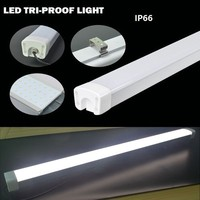 40w Aluminum alloy SMD 2835 LED Lights, 140lm/w IP66 IP65 exploration led tri-proof light
