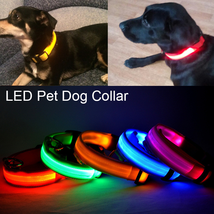 Nylon LED Pet Dog Collar Night Safety Flashing Glow In The Dark Dog Leash Dogs Luminous Fluorescent Collars Pet Supplies Z0057