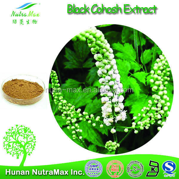 High quality natural black cohosh root extract