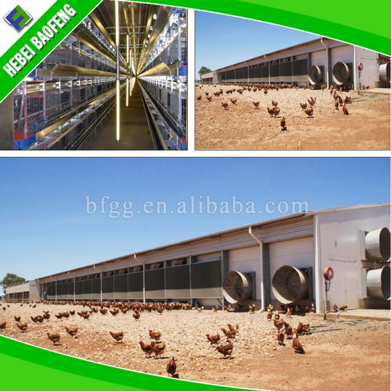 Fast supplier construction economic structure building large-scale poultry house