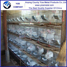 Factory price rabbit cages industrial /welded rabbit cage wire mesh for rabbit cage