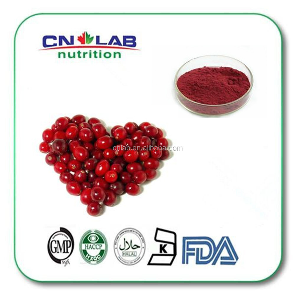 Best quality Cheapest cranberry freeze dried fruit